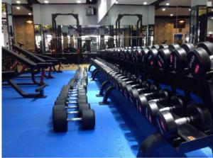 tham-xop-phong-gym